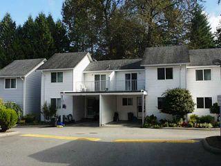 Photo 1: # 7 12070 207A ST in Maple Ridge: Northwest Maple Ridge Condo for sale : MLS®# V1088196