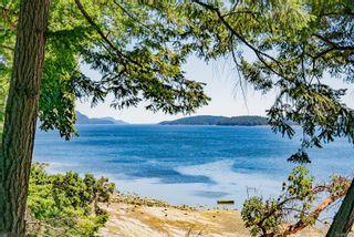 Photo 66: 2205 SHAW Rd in : Isl Gabriola Island House for sale (Islands)  : MLS®# 879745