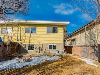 Photo 21: 25 Silverdale PL NW in Calgary: Silver Springs House for sale : MLS®# C4290404