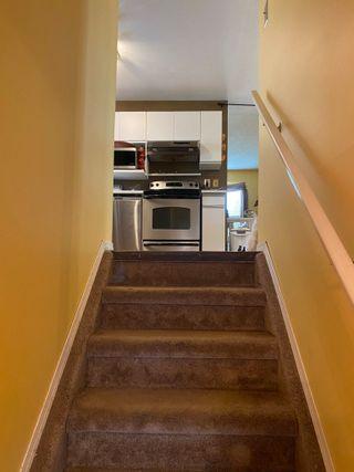 Photo 28: 7421 186 Street in Edmonton: Zone 20 House for sale : MLS®# E4263326