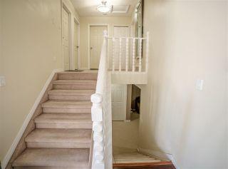 Photo 17: 6778 39 Avenue in Edmonton: Zone 29 House for sale : MLS®# E4233001