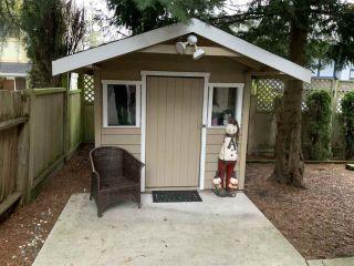 "Photo 40: 5065 1ST Avenue in Delta: Pebble Hill House for sale in ""ENGLISH BLUFF - TSAWWASSEN BEACH"" (Tsawwassen)  : MLS®# R2560136"