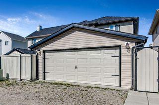 Photo 33: 145 Saddlehorn Crescent NE in Calgary: Saddle Ridge Detached for sale : MLS®# A1109018