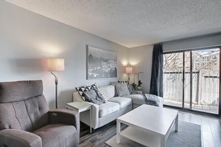 Photo 17: 104 7172 Coach Hill Road SW in Calgary: Coach Hill Row/Townhouse for sale : MLS®# A1097069