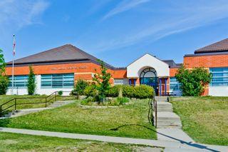 Photo 30: 1244 Falconridge Drive NE in Calgary: Falconridge Detached for sale : MLS®# A1067317