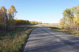 Photo 5: 31 53214 RR13: Rural Parkland County Rural Land/Vacant Lot for sale : MLS®# E4266458