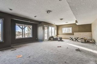 Photo 37: 36 ROYAL HIGHLAND Court NW in Calgary: Royal Oak Detached for sale : MLS®# A1029258