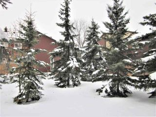 Photo 35: 7118 178 Street in Edmonton: Zone 20 Townhouse for sale : MLS®# E4222101