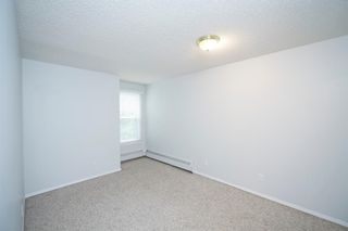 Photo 8: 215 2204 1 Street SW in Calgary: Mission Apartment for sale : MLS®# A1092168