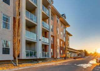 Photo 47: 327 45 INGLEWOOD Drive: St. Albert Apartment for sale : MLS®# A1085336