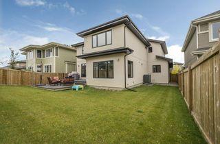 Photo 3: 20009 128A Avenue in Edmonton: Zone 59 House for sale : MLS®# E4214031