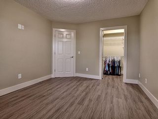 Photo 24: 656 Copperfield Boulevard SE in Calgary: Copperfield Detached for sale : MLS®# A1143747