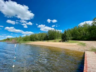Photo 6: RR 132 TWP 600: Rural Smoky Lake County Land Commercial for sale : MLS®# E4250832