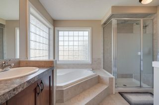 Photo 31: 160 Brightonstone Gardens SE in Calgary: New Brighton Detached for sale : MLS®# A1009065