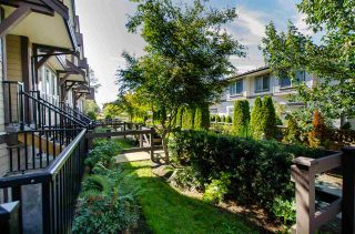 """Photo 3: 31 14877 60 Avenue in Surrey: Sullivan Station Townhouse for sale in """"LUMINA"""" : MLS®# R2092864"""