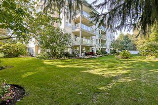 """Photo 17: 108 20453 53 Avenue in Langley: Langley City Condo for sale in """"Countryside Estates"""" : MLS®# R2208732"""