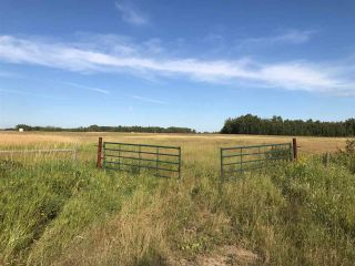 Photo 17: 57525 Rg Rd 214: Rural Sturgeon County Rural Land/Vacant Lot for sale : MLS®# E4266088