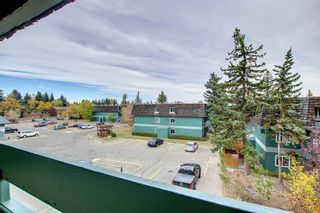 Photo 11: 1302 315 Southampton Drive SW in Calgary: Southwood Apartment for sale : MLS®# A1153022