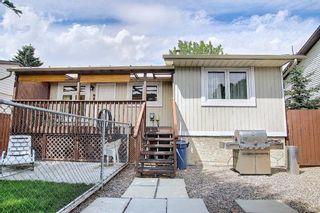 Photo 27: 108 Fallswater Road NE in Calgary: Falconridge Detached for sale : MLS®# A1133695