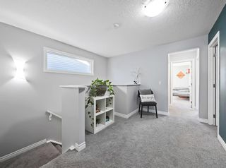Photo 19: : Airdrie Detached for sale : MLS®# A1070215