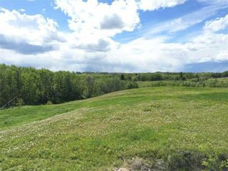 Photo 3: 63 Rolling Acres Place in Rural Rocky View County: Rural Rocky View MD Land for sale : MLS®# A1048853