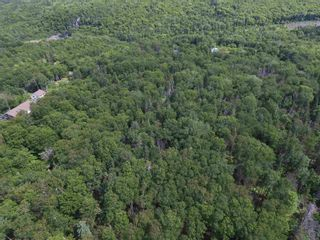 Photo 6: 40 Glen Albert Drive in Big Pond: 207-C. B. County Vacant Land for sale (Cape Breton)  : MLS®# 202118765