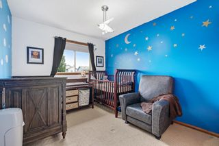 Photo 19: 267 Mt Apex Green SE in Calgary: McKenzie Lake Detached for sale : MLS®# A1121866