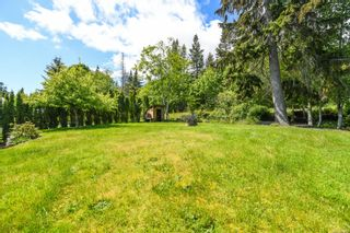Photo 56: 5523 Tappin St in : CV Union Bay/Fanny Bay House for sale (Comox Valley)  : MLS®# 871549