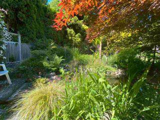 Photo 19: 6326 BLIGH Road in Sechelt: Sechelt District House for sale (Sunshine Coast)  : MLS®# R2591020