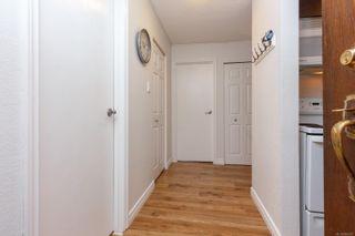 Photo 16: 123 1025 Inverness Rd in Saanich: SE Quadra Condo for sale (Saanich East)  : MLS®# 856607