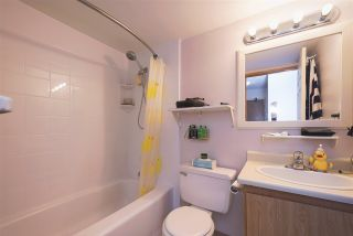 "Photo 11: 107 615 NORTH Road in Coquitlam: Coquitlam West Condo for sale in ""NORFOLK MANOR"" : MLS®# R2152631"