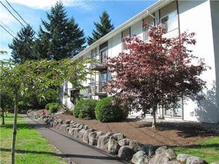 """Main Photo: 2 38171 WESTWAY Avenue in Squamish: Valleycliffe Condo for sale in """"Westway Apartments"""" : MLS®# R2619687"""