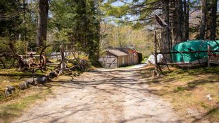 Photo 28: 195 Back Lake Road in Upper Ohio: 407-Shelburne County Residential for sale (South Shore)  : MLS®# 202112479