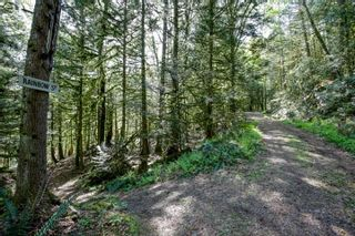 Photo 20: LOT 7 HARRISON River: Harrison Hot Springs House for sale : MLS®# R2562627