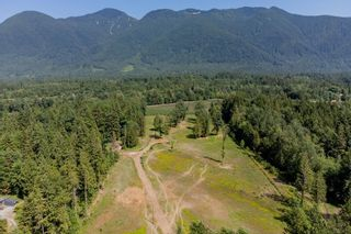 Photo 37: 13796 STAVE LAKE Road in Mission: Durieu House for sale : MLS®# R2602703