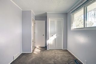 Photo 26: 132 Mardale Crescent NE in Calgary: Marlborough Detached for sale : MLS®# A1146772