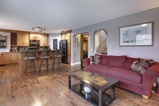Photo 7: 100 Mt Selkirk Close SE in Calgary: McKenzie Lake Detached for sale : MLS®# A1063625