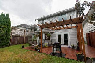 Photo 14: 11620 WARESLEY Street in Maple Ridge: Southwest Maple Ridge House for sale : MLS®# R2312204