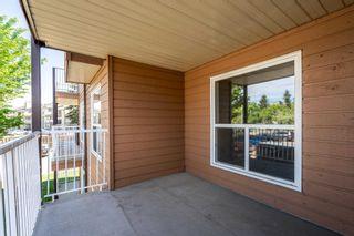 Photo 4: 211 20 ALPINE Place: St. Albert Condo for sale : MLS®# E4248468