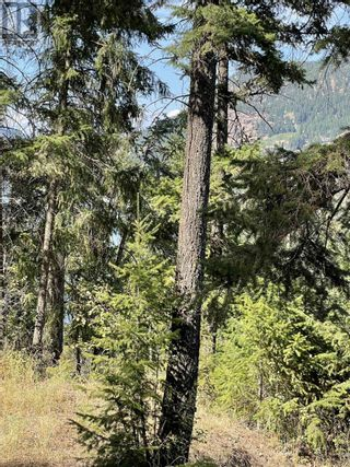 Photo 8: 1803 SOUTH LAKESIDE DRIVE in Williams Lake: Vacant Land for sale : MLS®# R2612495