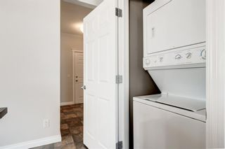 Photo 14: 311 2 HEMLOCK Crescent SW in Calgary: Spruce Cliff Apartment for sale : MLS®# A1086959