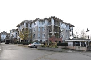 """Photo 1: C313 8929 202 Street in Langley: Walnut Grove Condo for sale in """"THE GROVE"""" : MLS®# R2142761"""