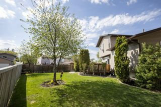 Photo 34: 31 Mchugh Place NE in Calgary: Mayland Heights Detached for sale : MLS®# A1111155