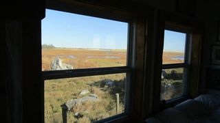 Photo 16: 179 Hawk Point Road in Clark's Harbour: 407-Shelburne County Residential for sale (South Shore)