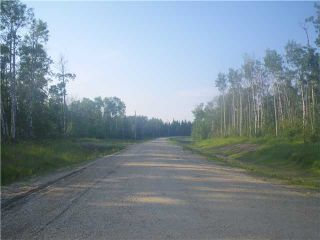 Photo 10: 314 55504 Rge Rd 13: Rural Lac Ste. Anne County Rural Land/Vacant Lot for sale : MLS®# E4213581