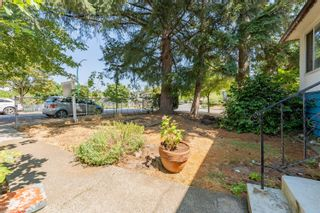 Photo 6: 3296 TURNER Street in Vancouver: Renfrew VE House for sale (Vancouver East)  : MLS®# R2621858