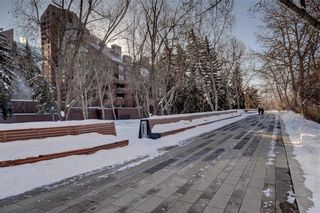 Photo 50: 500J 500 EAU CLAIRE Avenue SW in Calgary: Eau Claire Apartment for sale : MLS®# C4281669