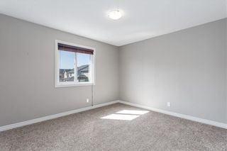 Photo 27: 166 Cranford Green SE in Calgary: Cranston Detached for sale : MLS®# A1062249