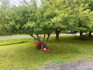 Photo 16: 1410 North Main Street in Westville: 107-Trenton,Westville,Pictou Residential for sale (Northern Region)  : MLS®# 202116425