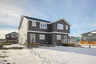 Photo 35: 110 Red Embers Common NE in Calgary: Redstone Semi Detached for sale : MLS®# A1051113